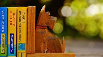 【托福閱讀】學會這8招托福閱讀關鍵技巧,保證你輕鬆拿高分
